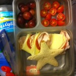 Toddler Dinners: Packing Lunch for the Bigs