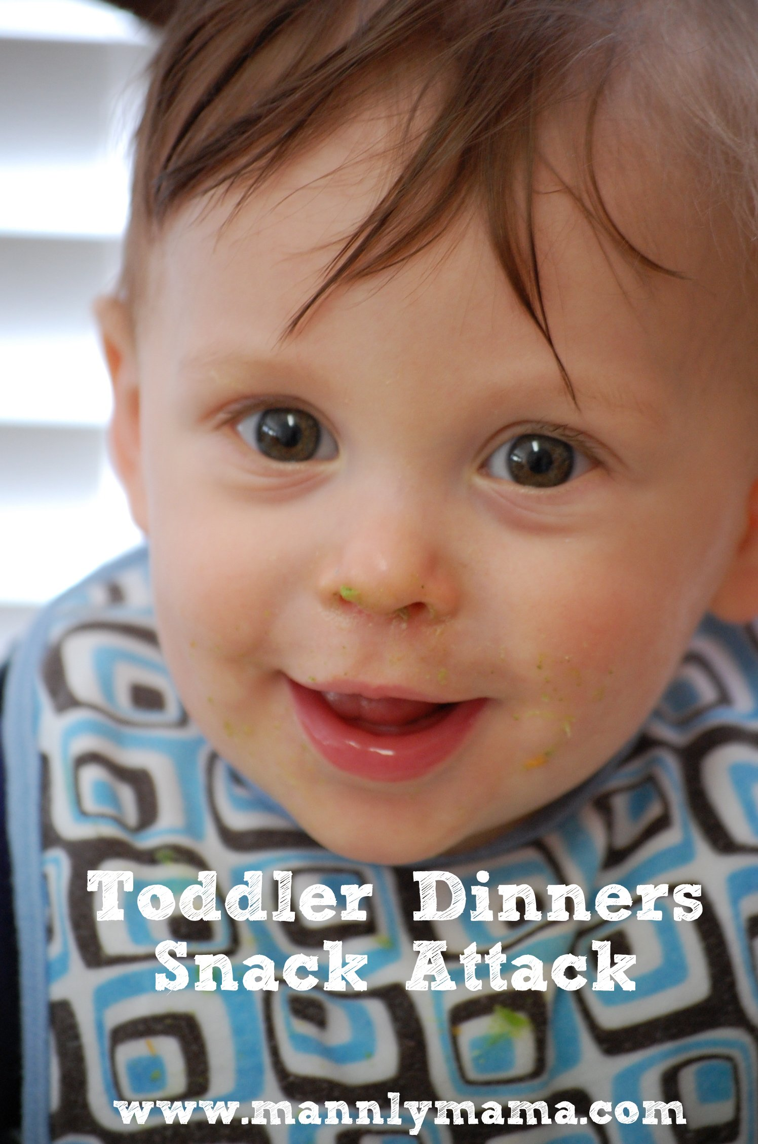Toddler Dinners Snack Attack