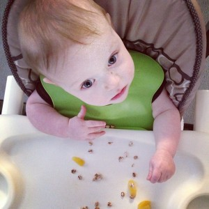Puffed_wheat_with_agave__thawed_pineapple_and_freeze_dried_mangos_for_Captain_teething_Mann.__infantdinners__infantbreakfast